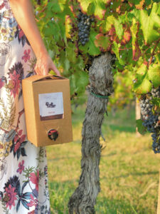 Bag in Box - Vigne degli Olmi